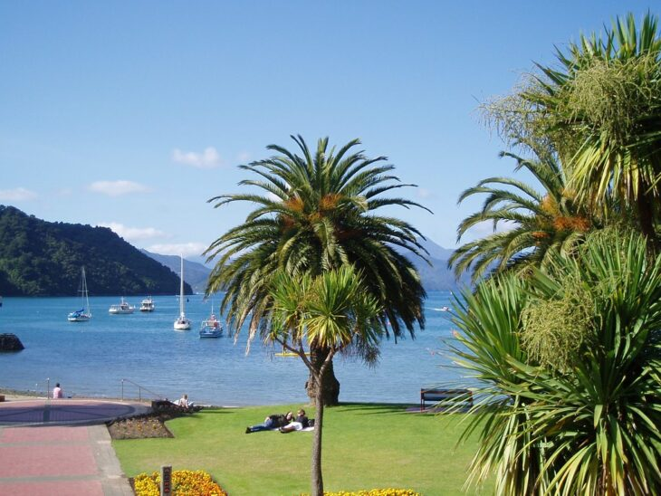 New Zealand 4