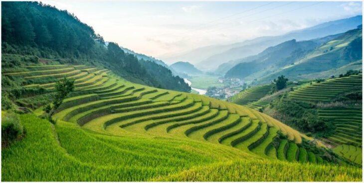 Vietnamese climate