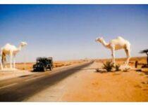 Western Sahara History